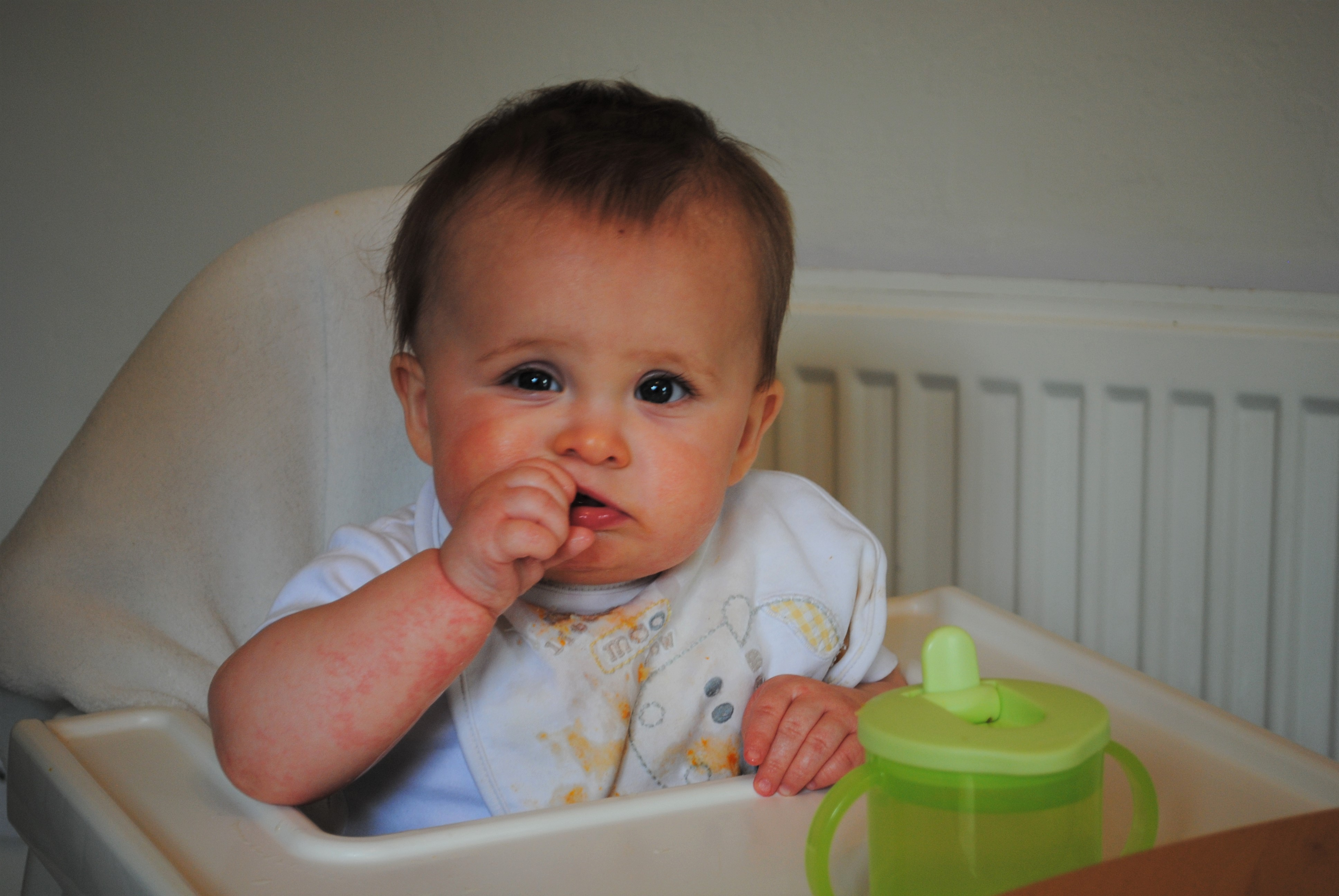 Weaning with multiple allergies finger food