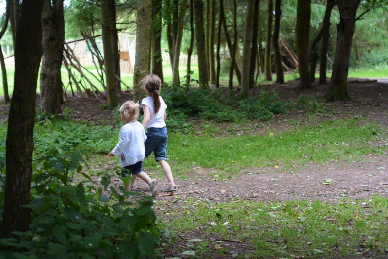 Siblings June Sisters in the wood