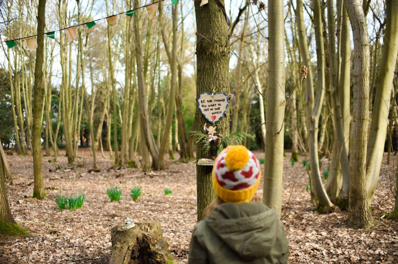 Our low spend half term heart of the country fairy woods