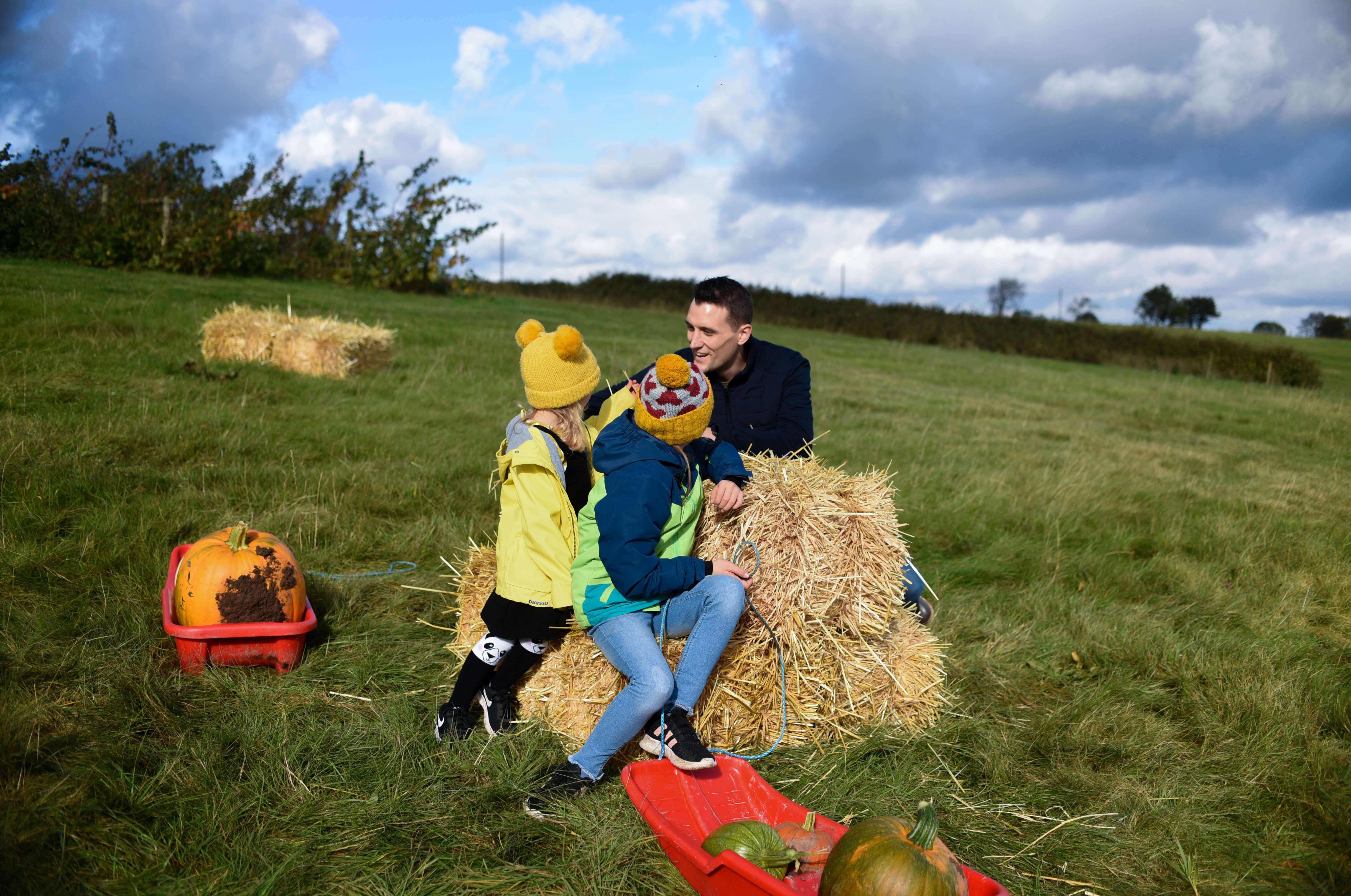 pumpkin patch picking shadows farm Derbyshire