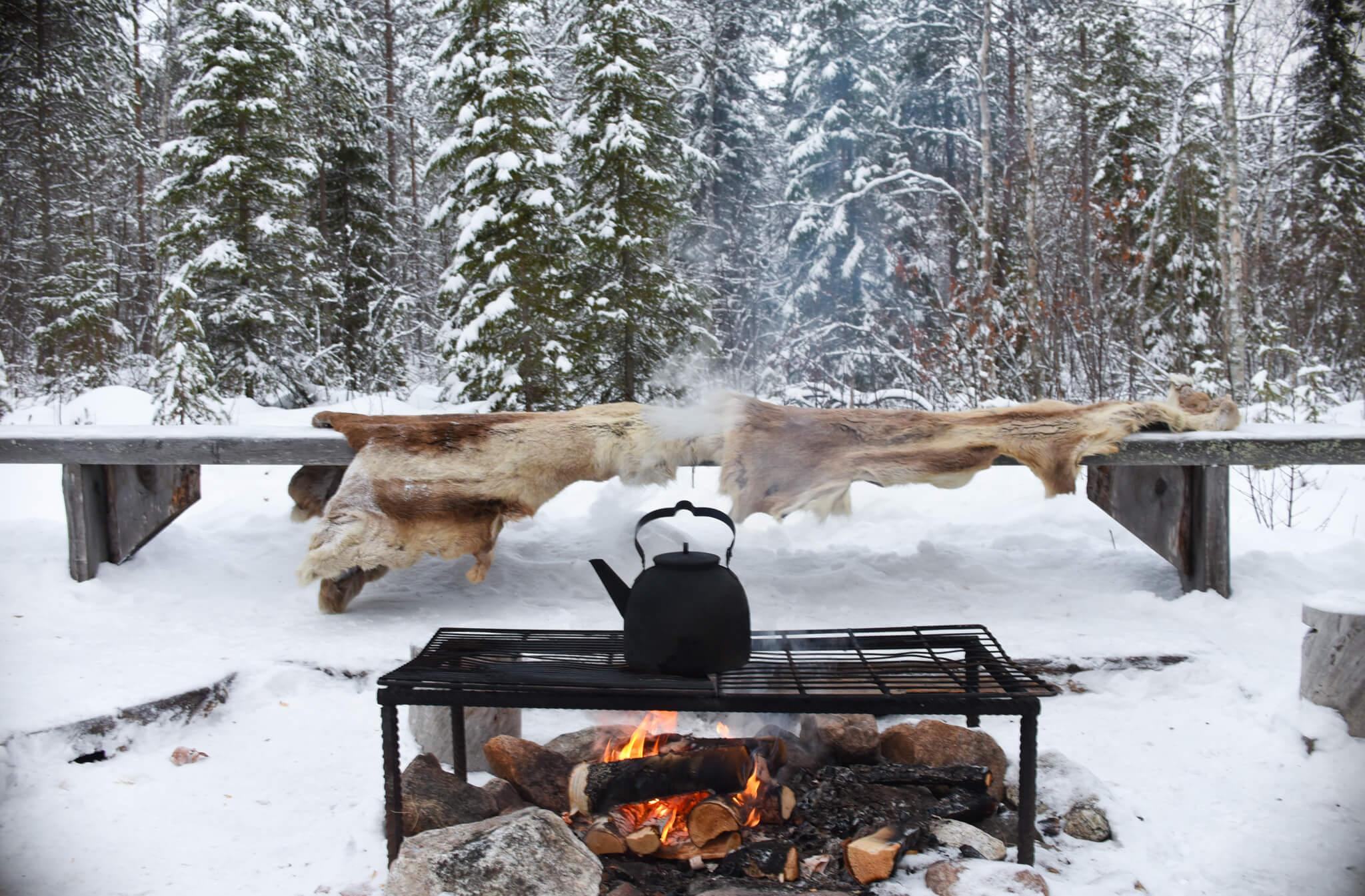 Lapland Excursion