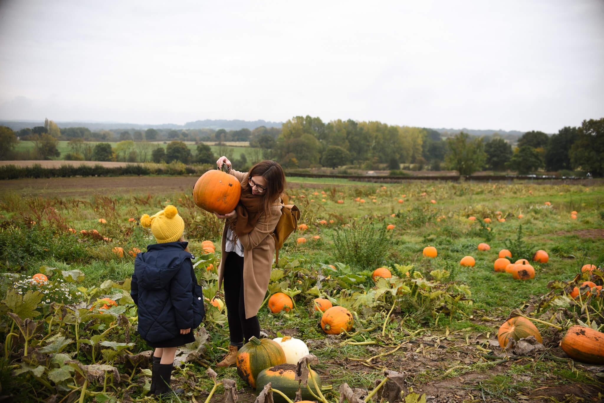 autumn bucket list Scaddows pumpkin patch